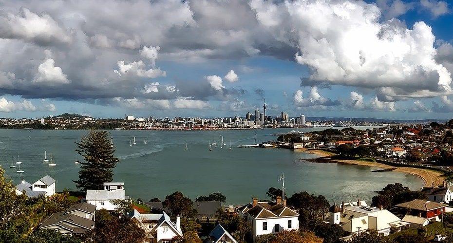 10 Years Teaching English in New Zealand