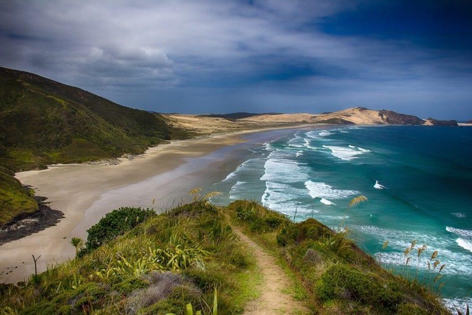 Traveling Through New Zealand