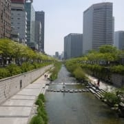 TESOL South Korea Certification and Recruitment